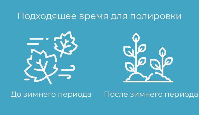 infografika-podhodyashiy-period